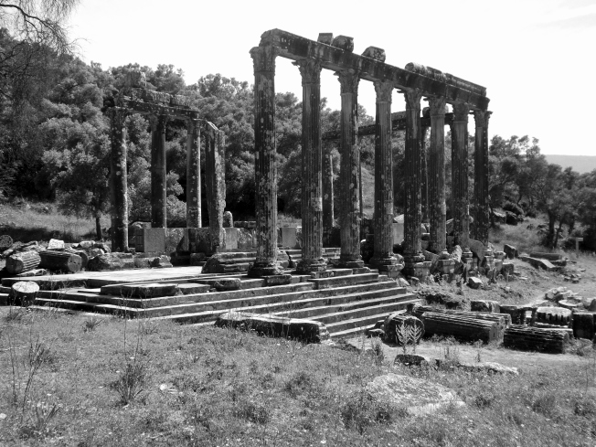 The Temple of Zeus in the Ancient City of Euromos
